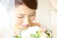 盆栽 結婚祝い特集へ