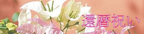 盆栽 還暦祝い特集へ